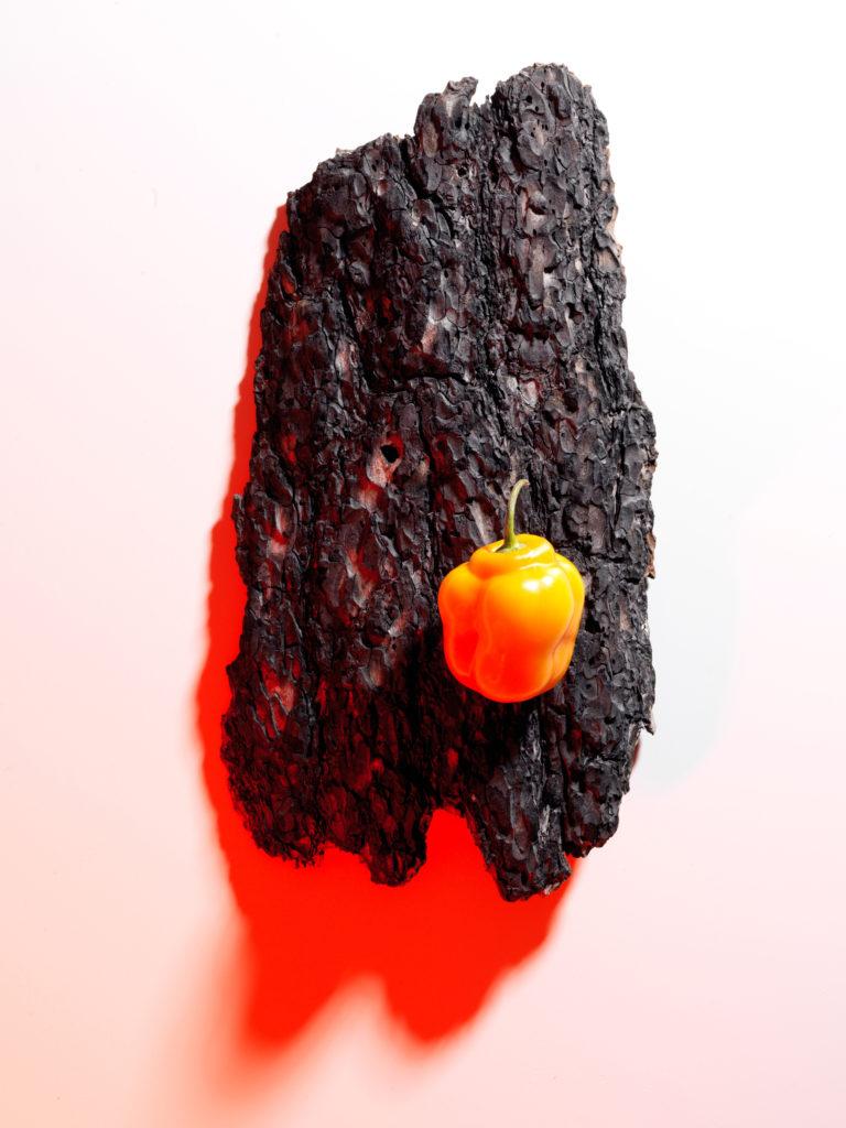 Habanero Mango Hot Sauce